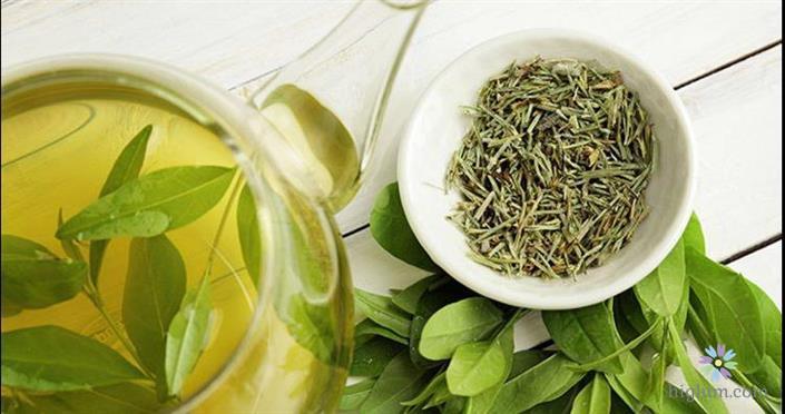 Giải độc gan bằng trà xanh