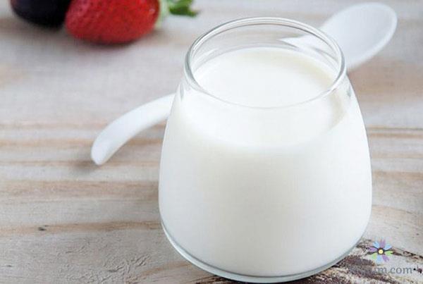 Trị nhiệt miệng bằng sữa chua