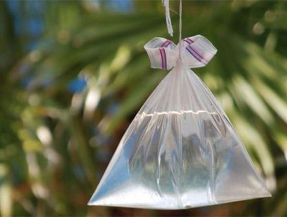 Đuổi ruồi bằng túi ni lông đựng nước