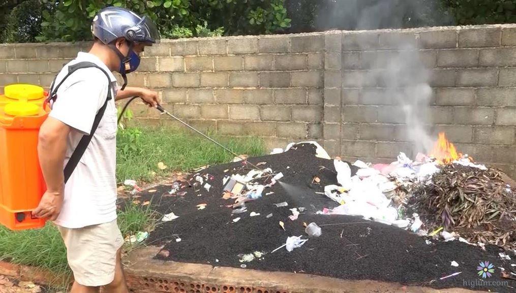 Cách diệt trừ bọ đậu đen
