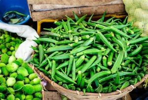 Hướng dẫn trồng đậu bắp