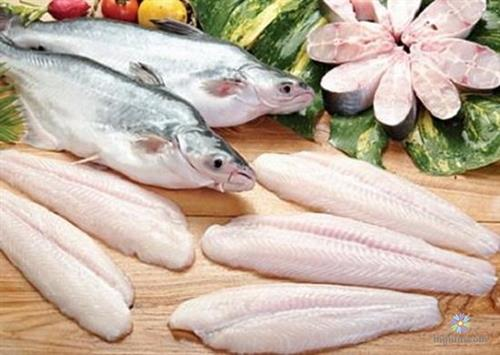Phân biệt cá hú và cá basa