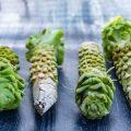 Hướng dẫn trồng wasabi tại Việt Nam